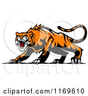 Clipart Of A Roaring Aggressive Tiger Royalty Free Vector Illustration