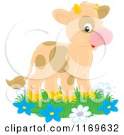 Cute Brown Spotted Calf Cow On Grass And Flowers