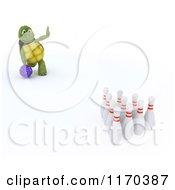 Poster, Art Print Of 3d Bowling Tortoise 2