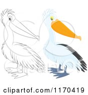 Cartoon Of A Cute Pelican Bird In Color And Black And White Royalty Free Vector Clipart by Alex Bannykh