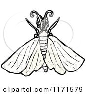 Cartoon Of A Moth Royalty Free Vector Illustration by lineartestpilot