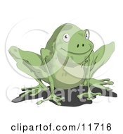 Cute Little Green Frog Clipart Illustration