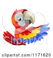 Cartoon Of A Happy Macaw Parrt Presenting A Sign Royalty Free Vector Clipart