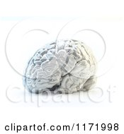 Clipart Of A 3d Shiny Silver Human Brain Royalty Free CGI Illustration