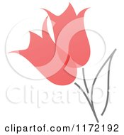 Red Abstract Spring Tulip Flowers