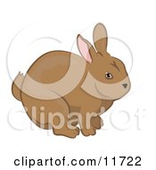 Cute Brown Bunny Rabbit Clipart Illustration