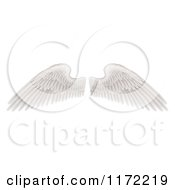 Clipart Of Spread White Feathered Wings Royalty Free Vector Illustration