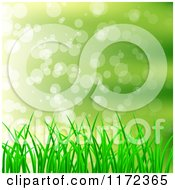 Green Grass Background With Light Flares