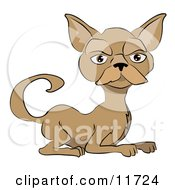 Brown Cat With A Mustache Clipart Illustration