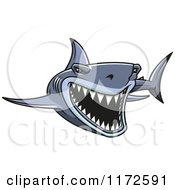 Clipart Of An Attacking Shark Royalty Free Vector Illustration