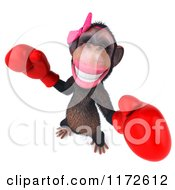 Clipart Of A 3d Female Boxing Chimp 4 Royalty Free CGI Illustration