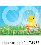 Cartoon Of A Cute Yellow Easter Chick Sitting On Eggs In Grass Against Blue Sky Royalty Free Vector Clipart by Pushkin