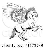 Cartoon Of A Black And White Winged Pegasus Horse Rearing Outline Royalty Free Vector Clipart by AtStockIllustration