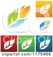 Clipart Of Colorful Feather Designs Royalty Free Vector Illustration