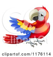 Cartoon Of A Presenting Scarlet Macaw Parrot Royalty Free Vector Clipart by AtStockIllustration
