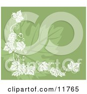 Grapevine Accent Over A Grape Leaf On Green Clipart Illustration by AtStockIllustration