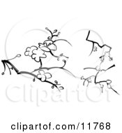 Blossoms On Branches Designs Clipart Illustration by AtStockIllustration