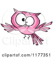 Cartoon Of A Cross Eyed Pink Owl Royalty Free Vector Clipart by toonaday
