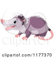 Cartoon Of A Cute Opossum Smiling Royalty Free Vector Clipart