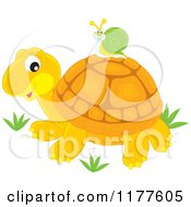 Cartoon Of A Snail Riding On A Cute Tortoise Royalty Free Vector Clipart