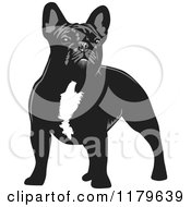 Cartoon Of A Standing Black And White French Bulldog Royalty Free Vector Clipart