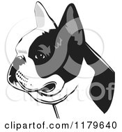 Cartoon Of A Black And White French Bulldog Face In Profile Royalty Free Vector Clipart by David Rey