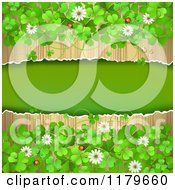 Clipart Of A Torn Wood Background With Clovers Flowers And Ladybugs Royalty Free Vector Illustration