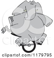 Cartoon Of A Circus Elephant Riding A Unicycle Royalty Free Vector Clipart
