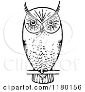 Clipart Of A Retro Vintage Black And White Owl Perched Royalty Free Vector Illustration by Prawny Vintage