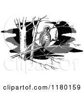 Clipart Of A Retro Vintage Black And White Owl In A Tree Royalty Free Vector Illustration by Prawny Vintage