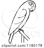 Clipart Of A Black And White Perched Parrot Royalty Free Vector Illustration by Prawny Vintage