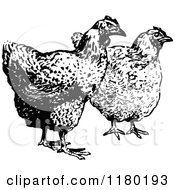 Clipart Of Retro Vintage Black And White Hens Royalty Free Vector Illustration by Prawny Vintage