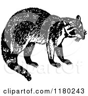 Clipart Of A Retro Vintage Black And White Raccoon Royalty Free Vector Illustration by Prawny Vintage