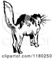 Clipart Of A Retro Vintage Black And White Scared Cat Royalty Free Vector Illustration