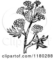 Clipart Of A Retro Vintage Black And White Flowering Plant 2 Royalty Free Vector Illustration