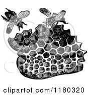 Retro Vintage Black And White Piece Of Honeycomb And Bees