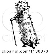 Clipart Of A Retro Vintage Black And White Old Dog With A Cane Royalty Free Vector Illustration