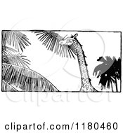 Clipart Of A Retro Vintage Black And White Giraffe Eating Leaves Royalty Free Vector Illustration by Prawny Vintage
