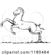 Clipart Of A Retro Vintage Black And White Horse Rearing Royalty Free Vector Illustration by Prawny Vintage