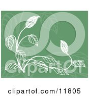 Green And White Floral Background Clipart Illustration by AtStockIllustration