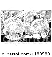 Clipart Of Retro Vintage Black And White Puffer Fish Royalty Free Vector Illustration
