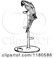Clipart Of A Retro Vintage Black And White Parrot On A Perch Royalty Free Vector Illustration by Prawny Vintage