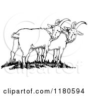 Clipart Of Retro Vintage Black And White Goats Royalty Free Vector Illustration by Prawny Vintage