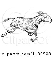 Clipart Of A Retro Vintage Black And White Donkey Running Royalty Free Vector Illustration by Prawny Vintage