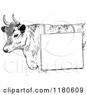 Clipart Of A Retro Vintage Black And White Cow With A Sign Royalty Free Vector Illustration by Prawny Vintage