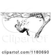 Clipart Of A Retro Vintage Black And White Boy Falling From A Tree Royalty Free Vector Illustration by Prawny Vintage