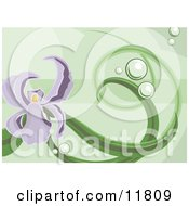 Purple Iris Background On Green Clipart Illustration