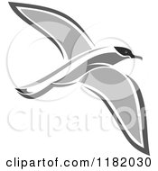 Clipart Of A Flying Petrel Bird Royalty Free Vector Illustration