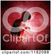 Clipart Of A 3d Human Fetus Embryo Baby Inside The Womb Royalty Free CGI Illustration