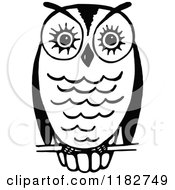 Black And White Perched Owl 3